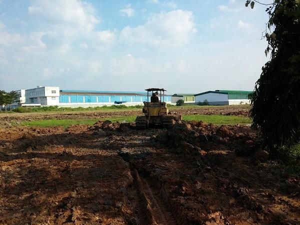 Trước khi thi công xây dựng nhà xưởng, đơn vị sẽ tiến hành san lấp đất và tạo nền móng vững chắc.